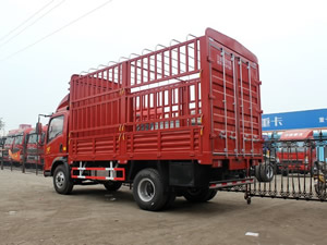 china light duty truck